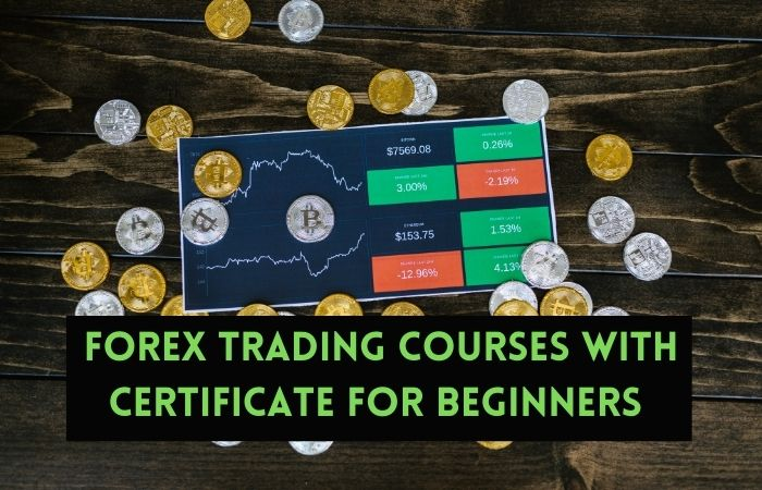 Forex Trading Courses with certificate For Beginners